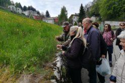 L'incontro con l'erborista: tra natura e salute e tante specialità rigorosamente a base di erbe